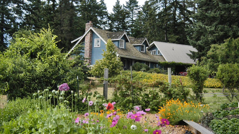 DDF Cottage
