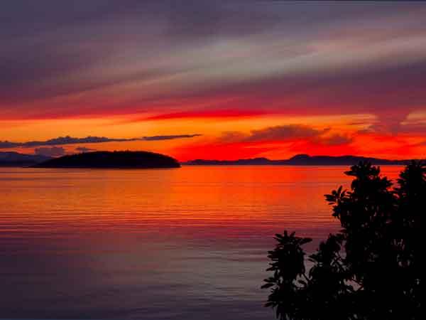 Sea Dream Orange Sunset
