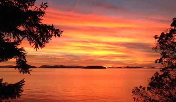 Sea Dream Sunset Tangerine