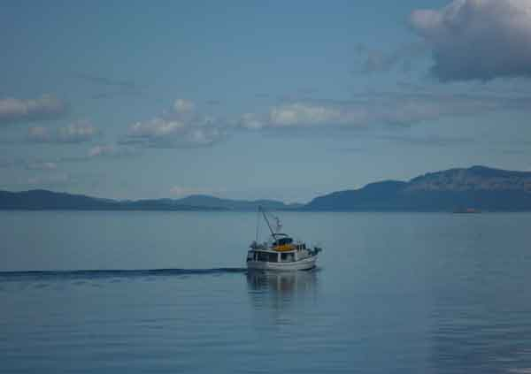 SD-Morning-Calm-boat600