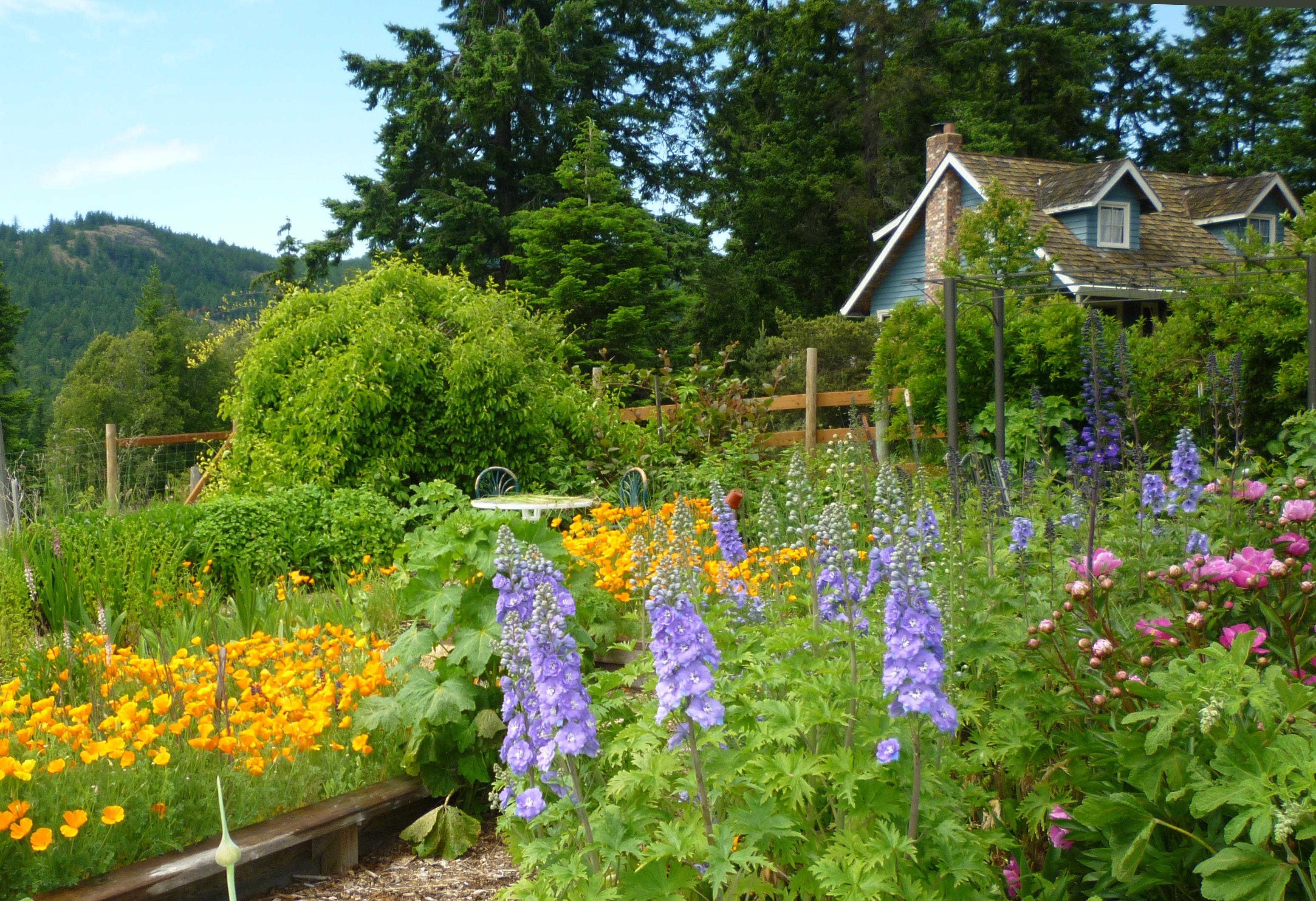 DDF Cottage and Garden