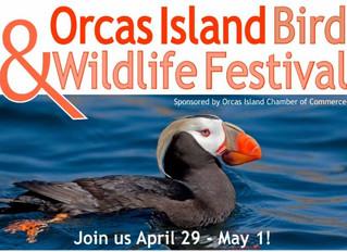 Orcas Island Bird & Wildlife Festival