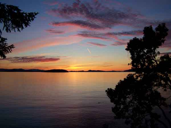 Sea Dream Feathery Sunset