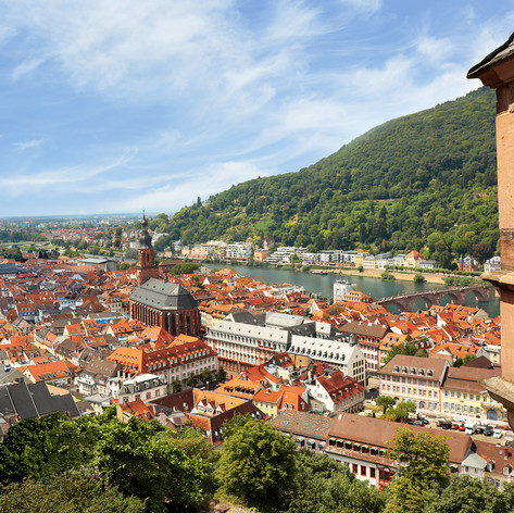 AmaRhine Heidelberg.jpg
