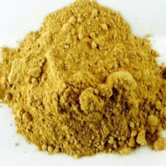 Ginger (Zingiber officianialis)