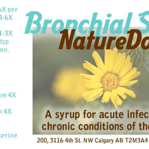 Bronchial Syrup 250mL