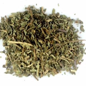 Dandelion leaf (Taraxacum off.)