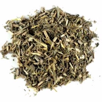 Cleavers (Gallium aparine)