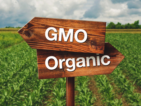 What you should know about GMO's