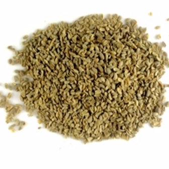 Aniseed (Pimpinella spp)