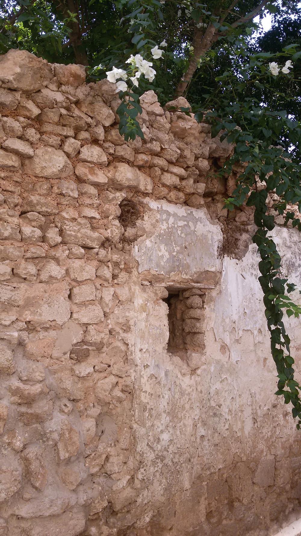 """חומת גדרה בצידו הדרומי של רחוב הביל""""ויים"""
