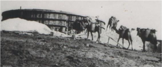 בניית בריכת מים . 1935