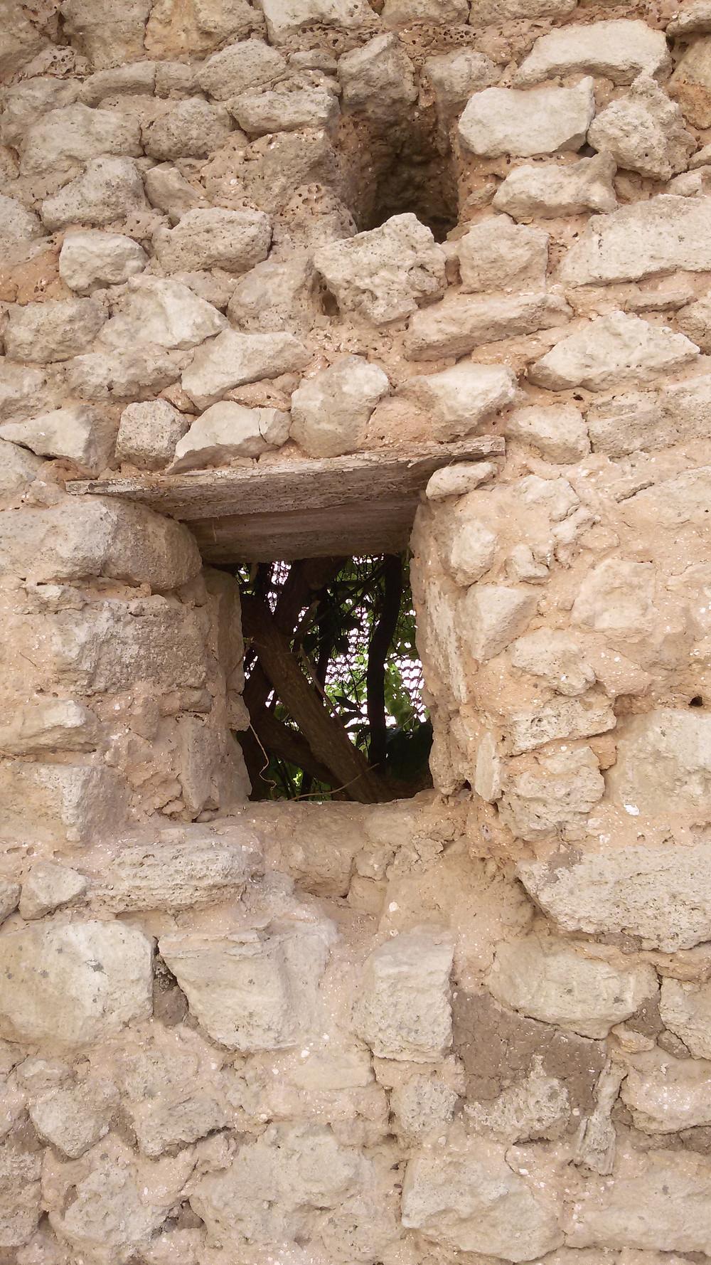 חומת גדרה הבנויה באבנים שלוקטו באזור