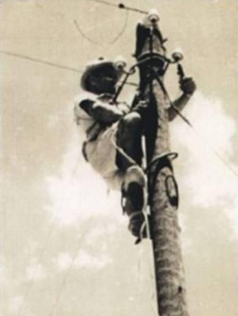 מהנדס החשמל פרנס קאודר