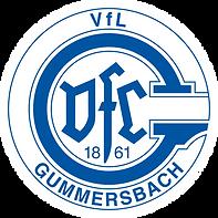 logo_vfl-gummersbach_blau 5 cm.png