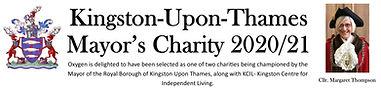 Mayor's charity banner 2021.jpg