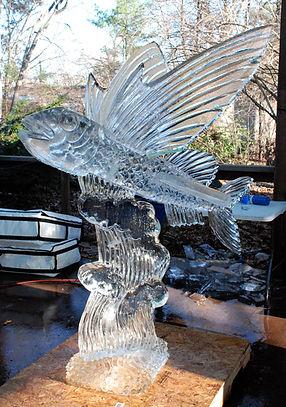 Bronx zoo 06.jpg