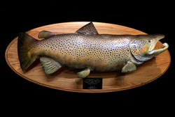 Custom Molded Reproduction Brown Trout