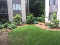 B and C Garden