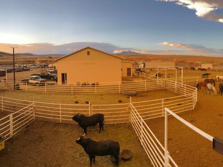 Entering Wyoming  (Part 4)