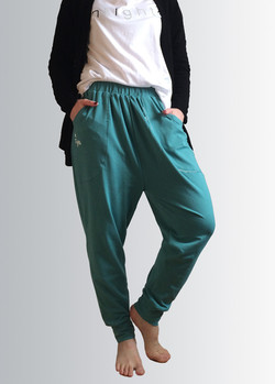 turquoise capri pants intights.jpg