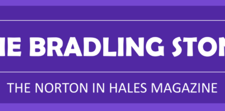 The Bradling Stone Magazine - July 2019