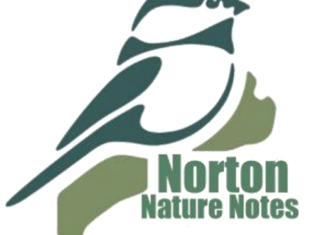 Nature Notes - July - August 2018