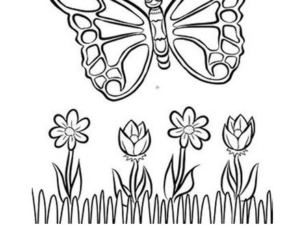 Colouring Competition for children aged 7 and under