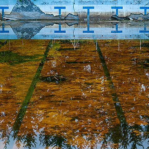 Le naufrage d'une piscine olympique