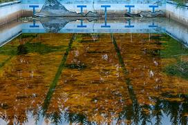 Bassin olympique