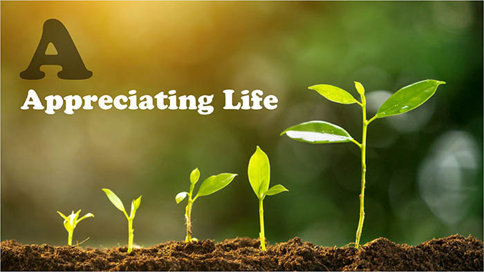 Respecting life by promoting green development concept.