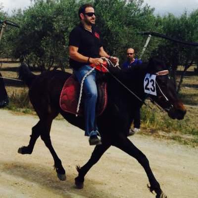 Ich reite mein Pferd