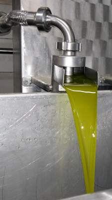 Frisch gepresstes neues natives Olivenöl extra
