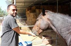 Mit einem meiner Pferde