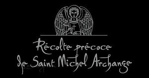 Logo Saint Michel Archange