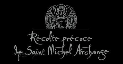 Logo Saint Michel Archange