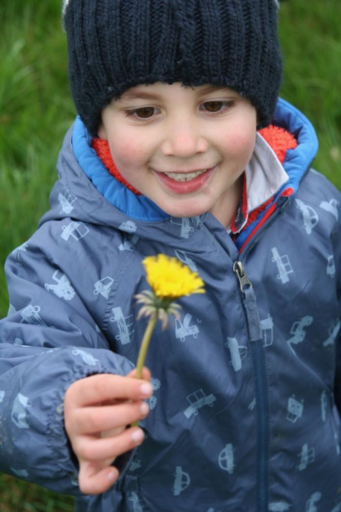 Why I'm setting up Petersfield's new farm school nursery and what is Reggio Emilia?