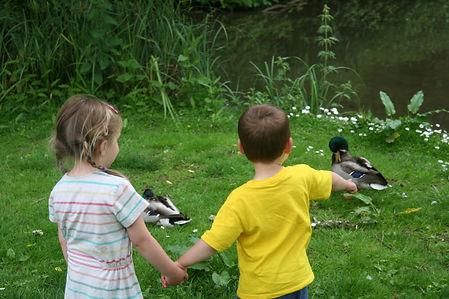 Petersfield Nursery School, Day nursery, childcare, Preschool Stroud, Nursery Hampshire, Reggio Emilia, Farm School Petersfield