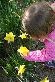 Nursery Petersfield, Nurseries Petersfield, Creche Petersfield, Nursery schools Petersfield