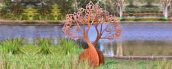 Boab Tree Sculpture