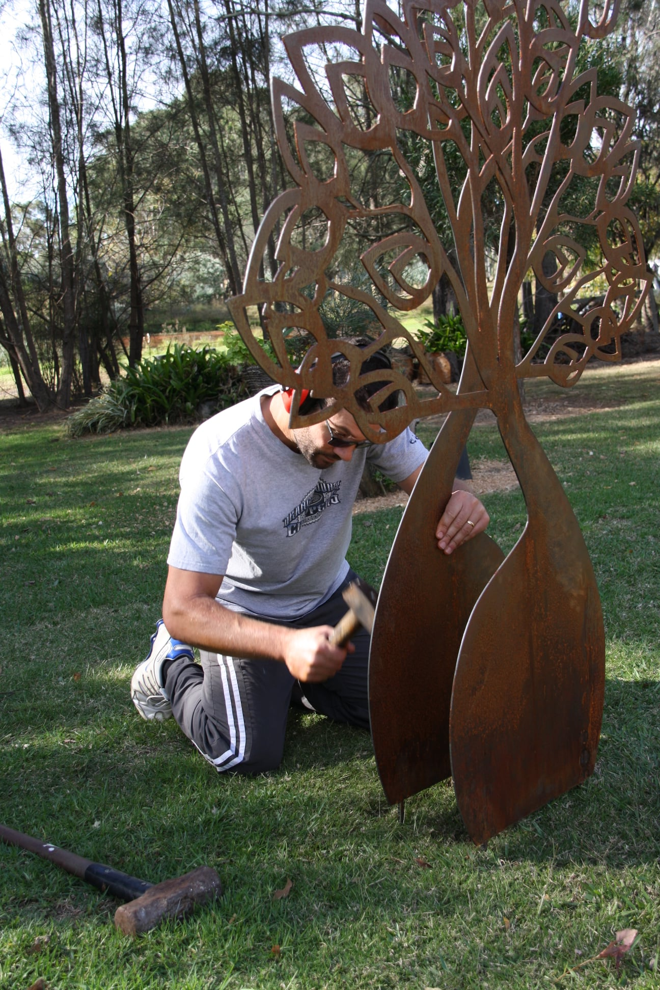 The Boab Tree Installation - Curves and