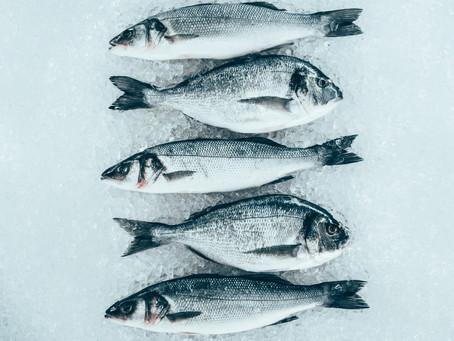 Suplementación de la dieta plantbased de los peces carnívoros.
