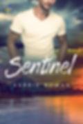 Sentinel-f500.jpg