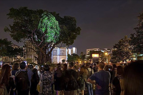 The Tree That Blinked - Larysa