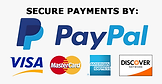 388-3884519_secure-payments-by-paypal-hd