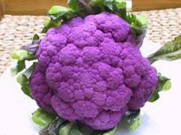 Broccoli, Purple