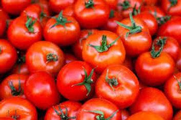 Tomatoes (4-5)