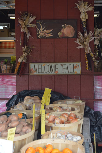 Welcome Fall at Dr. Davies Farm produce