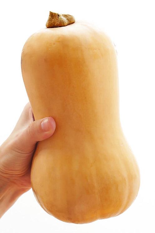 Butternut squash  (1)