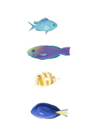 animals-2.jpg